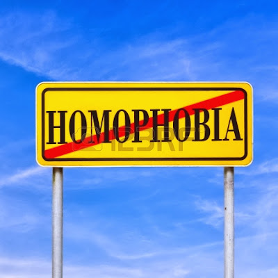 Informe anual homofòbia 2013