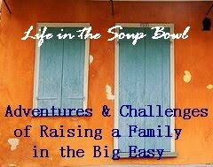 Life in the Soup Bowl