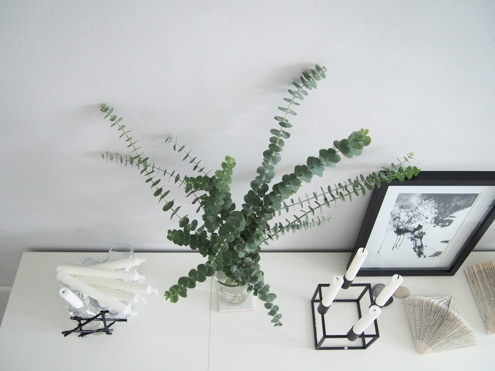 kalkkimaali eukalyptus