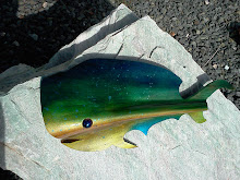 Bull Headed Mahi
