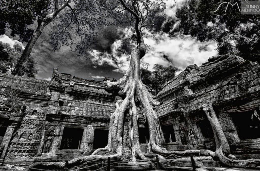 Angkor Ta Prohm. Fotografía de Sunny Merindo.
