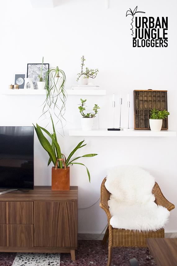 My plant shelfie | My Paradissi #urbanjunglebloggers