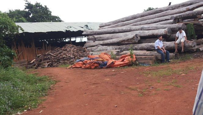 """Bộ Công an """"đánh úp"""" các xưởng gỗ khủng ở Gia Lai"""