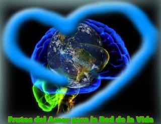 Hoy vengo a traerles a cada uno de Uds. los Frutos de mi Amor para que los incluyan en la creación de su propia Red de la Vida.