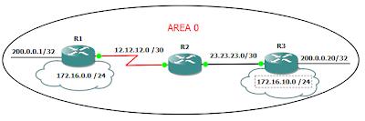 topologi ospf configuration