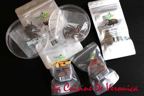 昆蟲零食 Insect Snacks