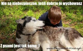 www.przystanekalaska.pl