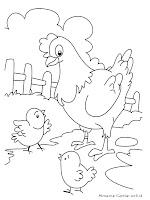 Gambar Mewarnai Induk Ayam Dan Anak-Anaknya