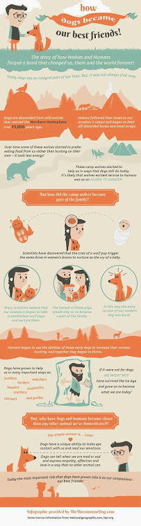 """How Dogs Became Our Best Friends!"""
