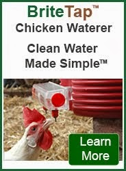 Clean Water Made Simple