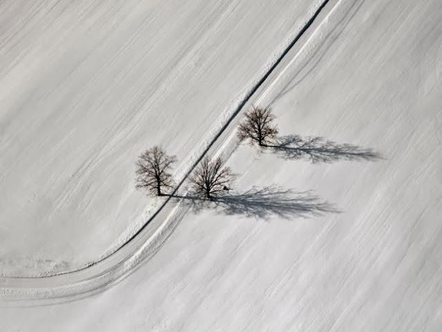Эта фотография была сделана в Лиелварде, Латвия. © Михаилс Игнатс