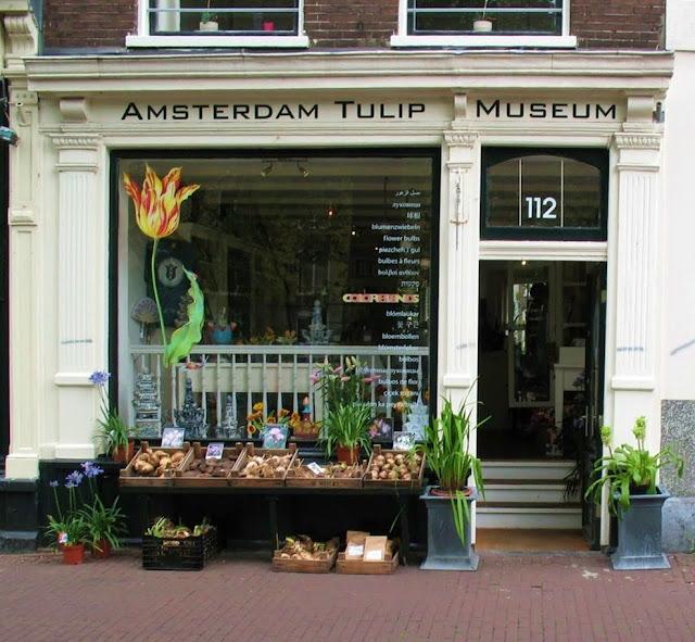 museo del tulipano Amsterdam