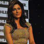 Chitrangada Singh Looks Super Hot At The Launch Of Kohler's Latest Collection