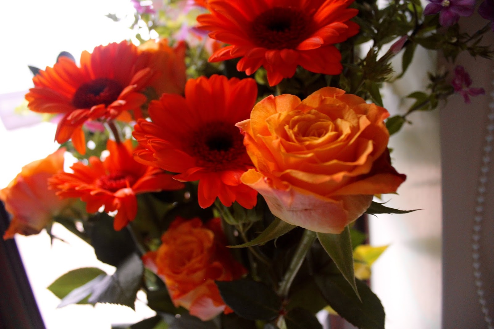 Debenhams Flowers direct to your door (and discount code ...