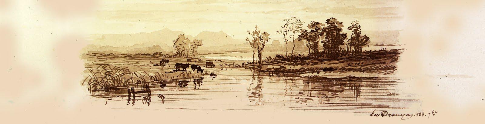 Lande, vaches, marais et pins : dessin de Leo Drouyn
