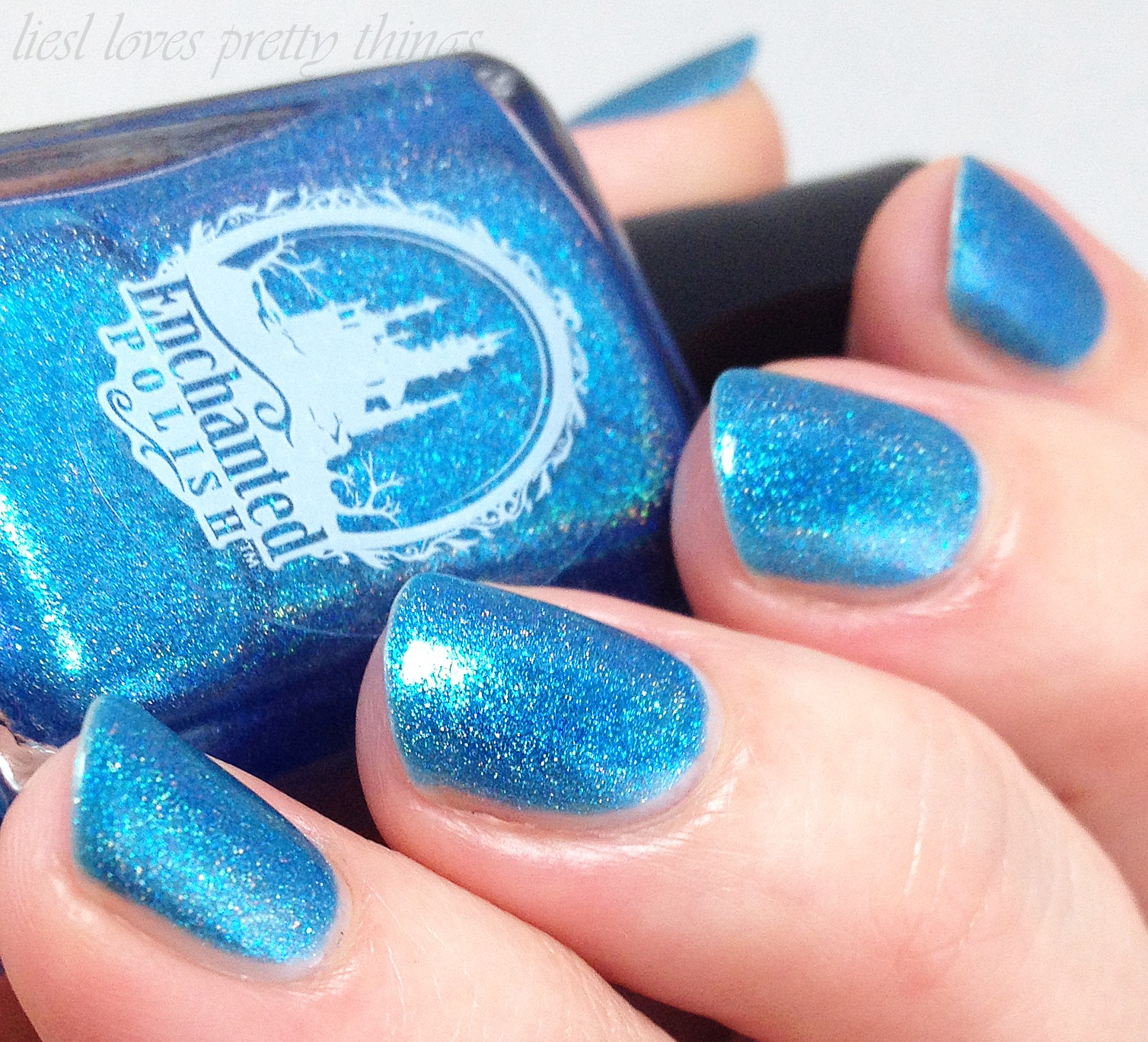 Enchanted Polish December 2014 swatch and review