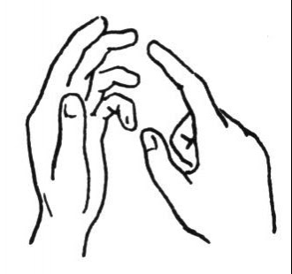 Line Drawing :: Clip Art :: Hands :: Fingres