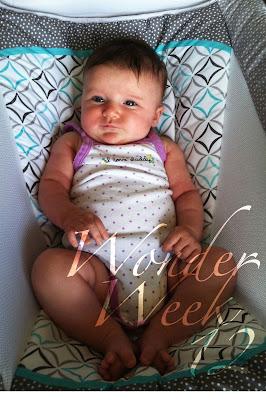 wonder week 12