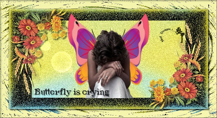 Butterfly is crying