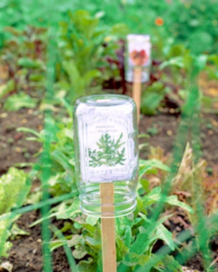 http://www.marthastewart.com/272224/plant-marker-protector