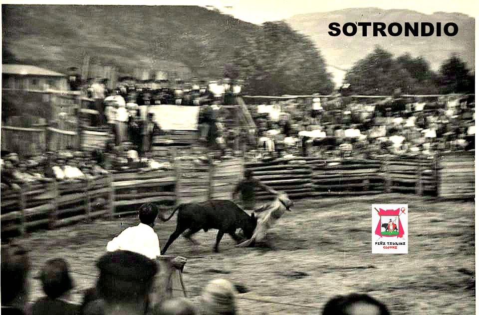 SOTRONDIO TOROS