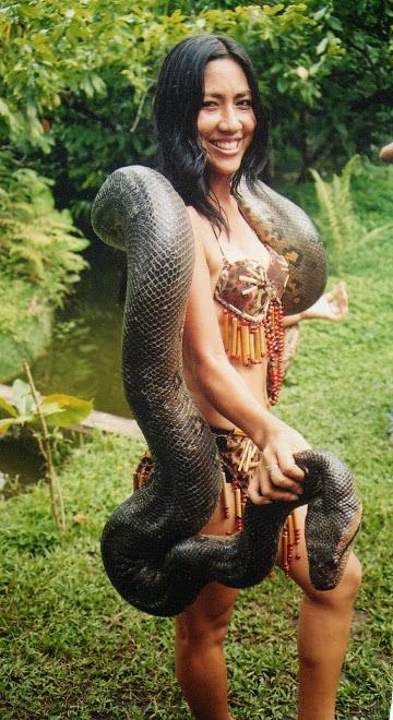 MODELO AMAZONICA