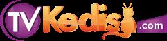 tvKedisi.com Dizi Haberleri