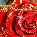 Rose day SMS and Messages for Rose day 2016