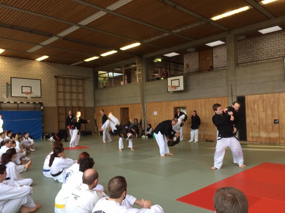 Gimnasio han kuk hapkido taekwondo noviembre 2015 for Gimnasio telde