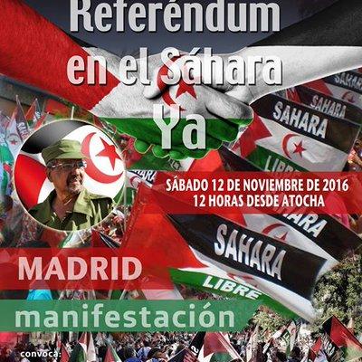 12 noviembre Referendum Sahara YA