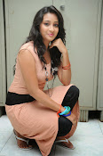 Actress Bhanusri Glamorous Photo shoot-thumbnail-13