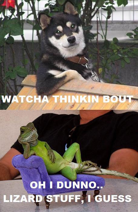 Watcha Thinkin Bout - Dunno - Lizard Stuff, I Guess