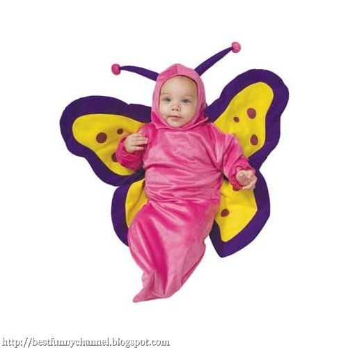 Baby butterfly.