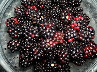 blackberries in bowl; photo by Val Phoenix