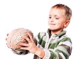 cara mengembangkan otak kanan pada anak anda