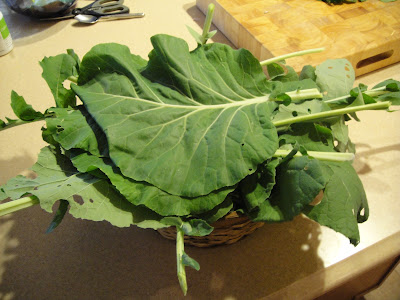 how to cut collard greens from the garden