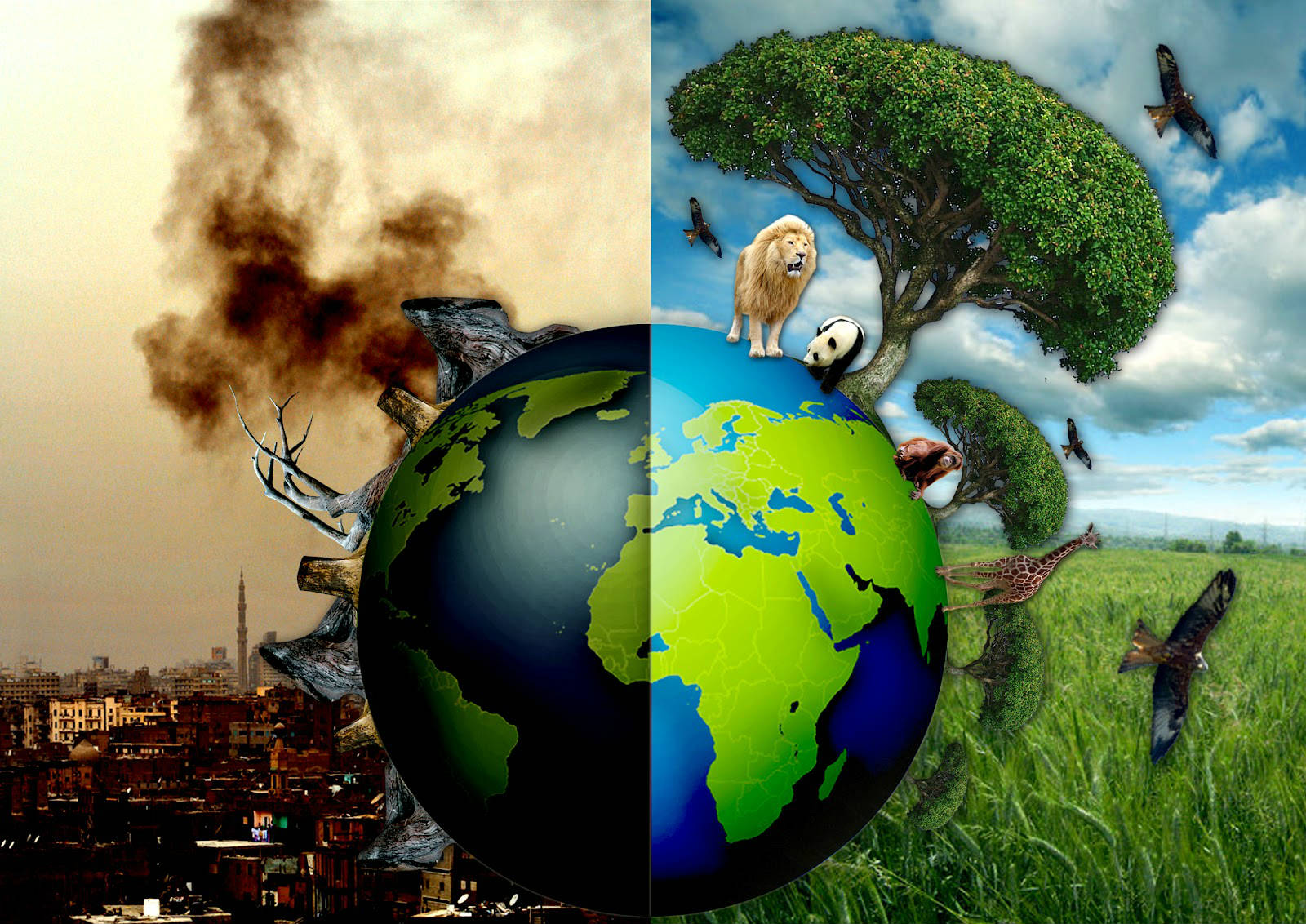 people are not paying attention to environmental protection what  environment is calling our world wide especially the frequent occurrence of natural disasters from tsunami to earthquakes