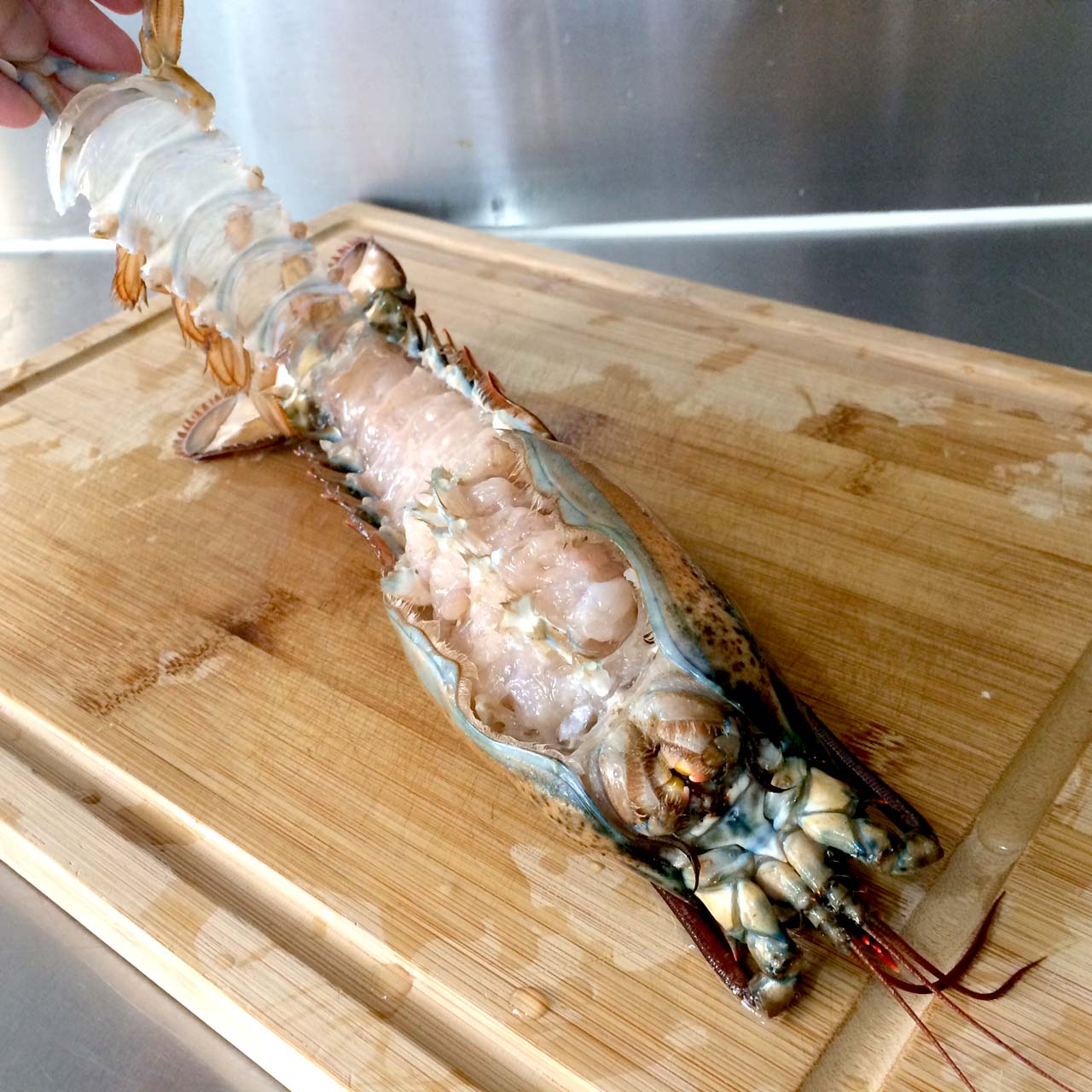 how to cut lobster shell