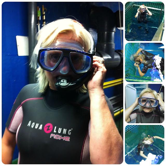 snorkelling with sharks at SEA LIFE London Aquarium