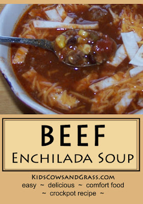 Beef Enchilada Soup from www.KidsCowsandGrass.com