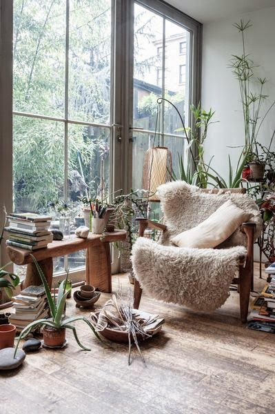 bring plants indoors for winter and fall