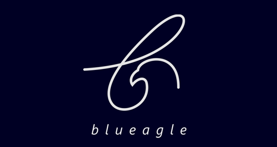 Design samples: Logo with birds