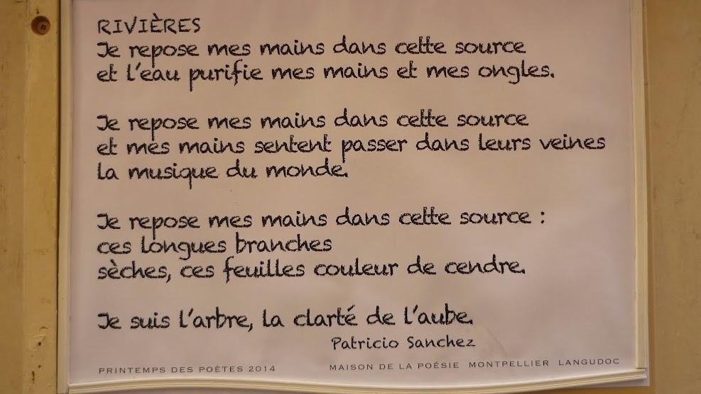 Rivières - Patricio SANCHEZ ROJAS