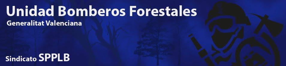 Sindicato SPPLB  Unidad Bomberos Forestales GV
