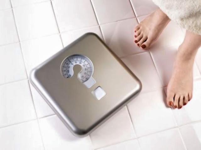 готовое питание для похудения