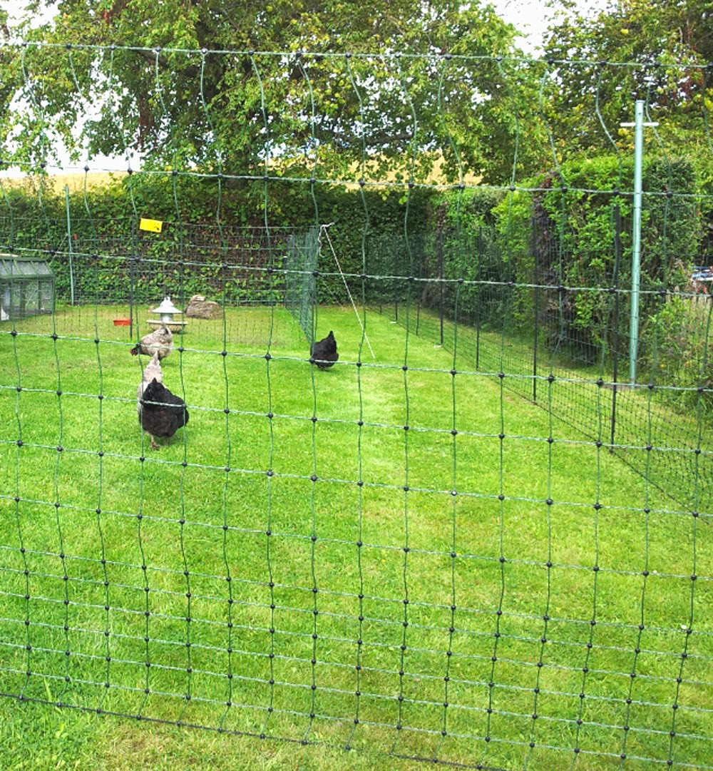 Turkey Fencing, turkey housing, fencing for turkeys, turkey housing and fencing