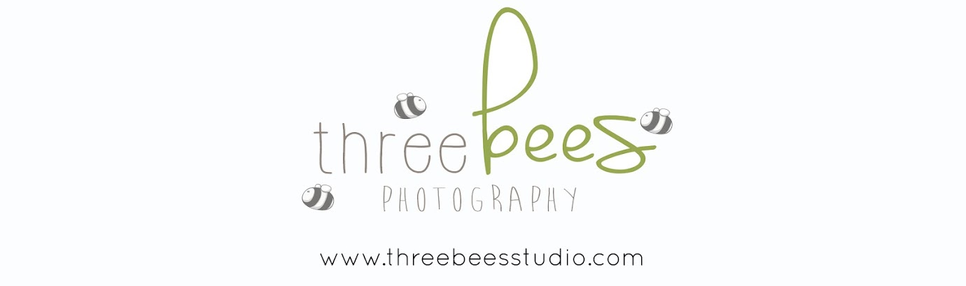 Three Bees Studio ~ Photography & Design