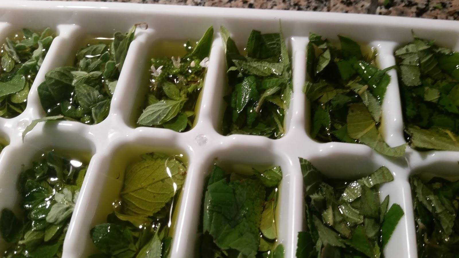 Sprouts Last Harvest Recap Portland Or