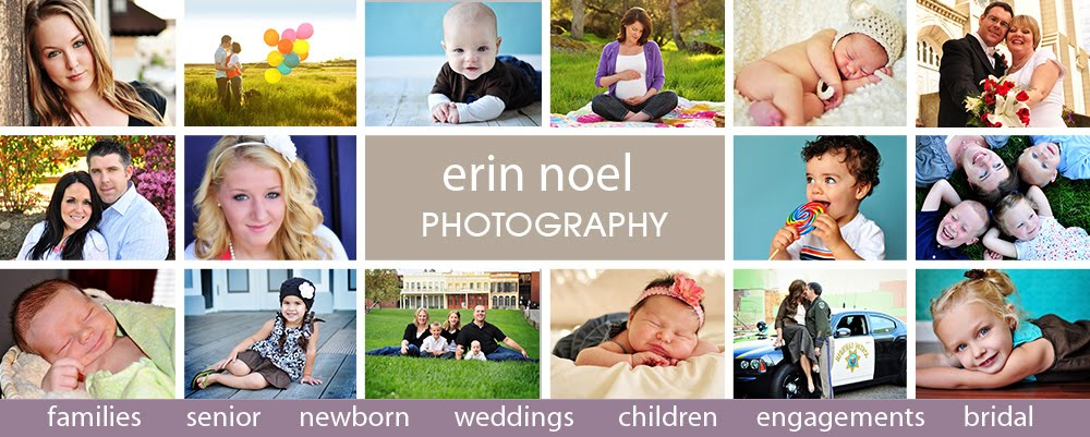Erin Noel Designs