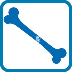 terminología básica - fracturas